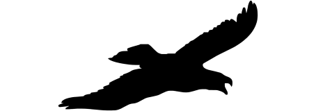 Uccello mod.06